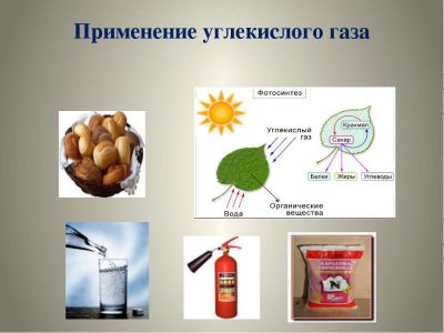 Kohlendioxid Vergiftung